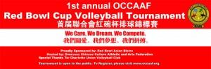 volleyball tournament banner3.0